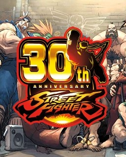 Street Fighter 30th Anniversary Collection (PC DIGITAL) (PC)