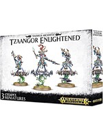 Warhammer Age of Sigmar -Tzaangor Enlightened