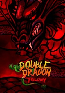 Double Dragon Trilogy (PC DIGITAL)