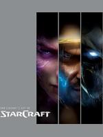 Kniha The Cinematic Art of Starcraft