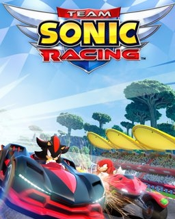 Team Sonic Racing (PC DIGITAL)
