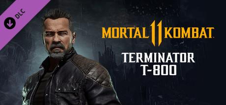 Mortal Kombat 11 Terminator T-800 (PC) Klíč Steam (PC)