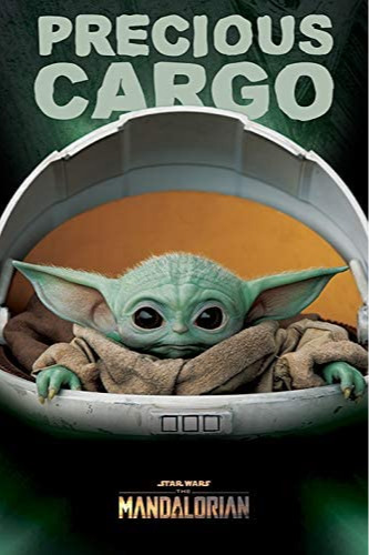 Plakát Star Wars - Precious Cargo (PC)
