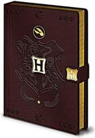Zápisník Harry Potter - Quidditch
