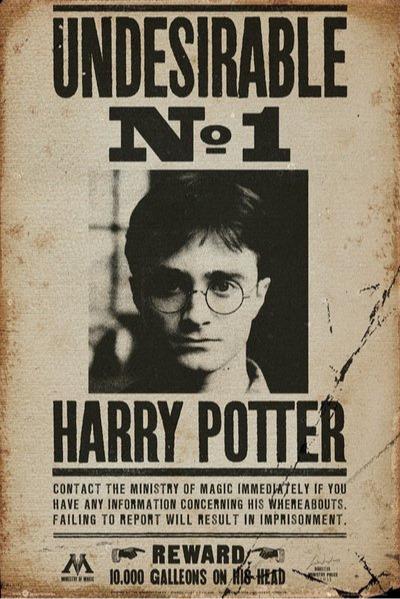 Plakát Harry Potter - Undesirable No 1 (PC)