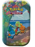 Karetní hra Pokémon TCG: Celebrations - Hoenn Tin
