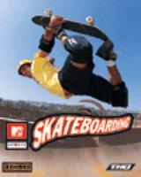 Skateboarding (PC)