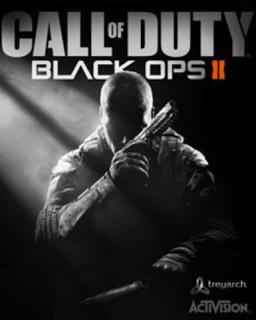 Call Of Duty Black Ops 2 (PC DIGITAL)