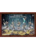 W-AOS: Wood Elves - Sisters of the Thorn (5 figurek)