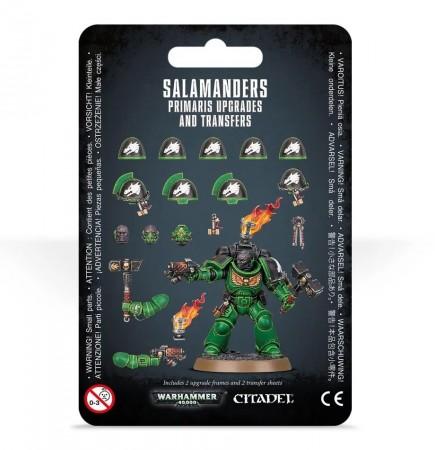 W40k: Salamanders Primaris Upgrades and Transfer