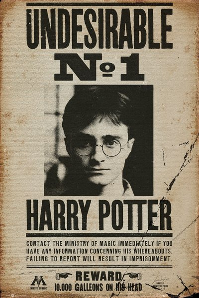 Plakát Harry Potter - Undesirable No 1