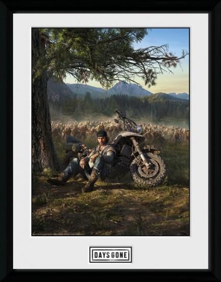 Zarámovaný plakát Days Gone - Key Art