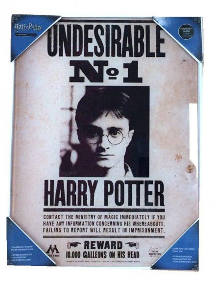 Skleněný plakát Harry Potter - Undesirable No. 1